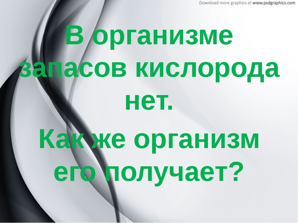 В организме запасов кислорода нет. Как же организм его получает?