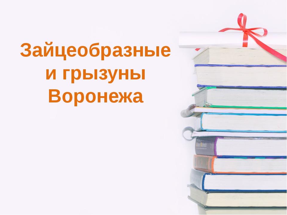 Зайцеобразные и грызуны Воронежа