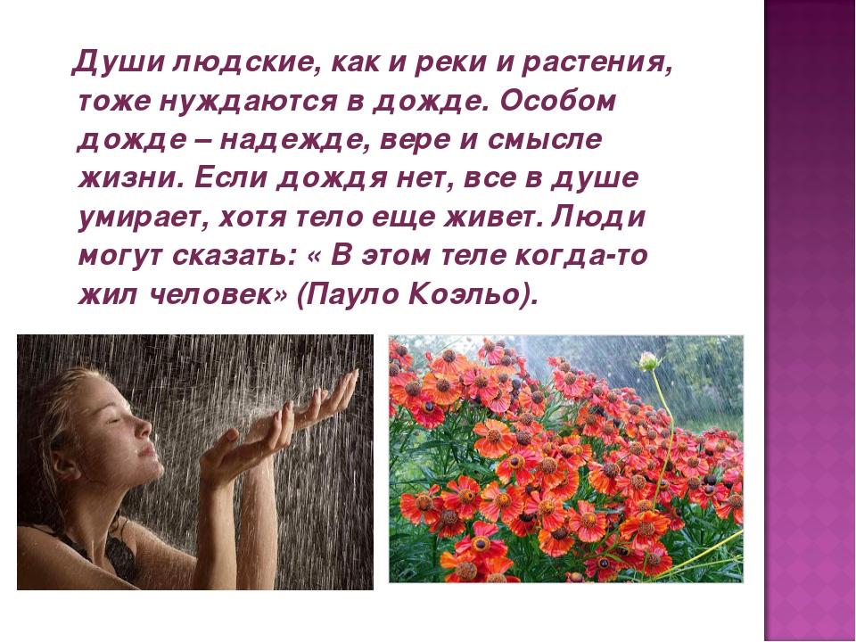 Души людские, как и реки и растения, тоже нуждаются в дожде. Особом дожде –...