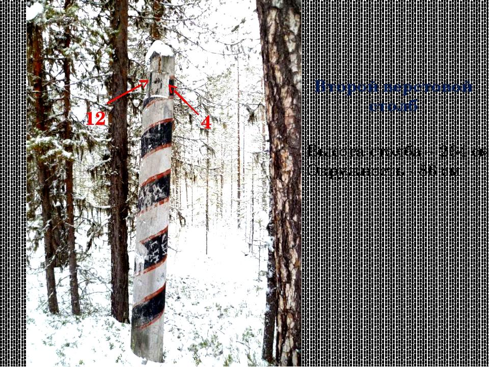 Второй верстовой столб Высота столба – 264 см Окружность - 86 см 12 4