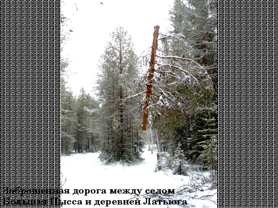 Заброшенная дорога между селом Большая Пысса и деревней Латьюга
