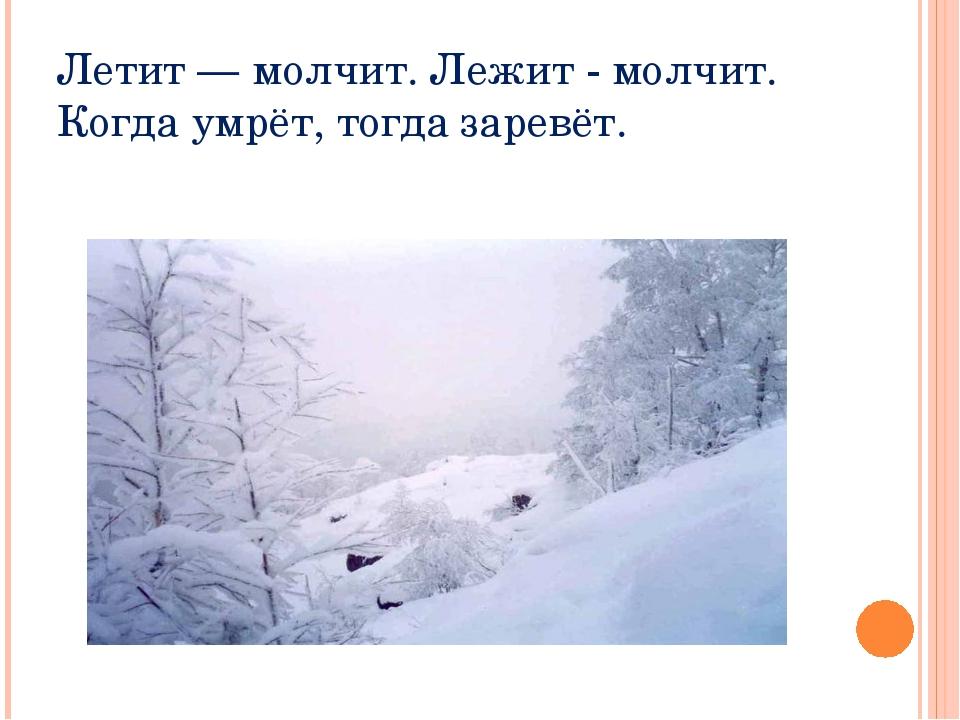 Летит — молчит. Лежит - молчит. Когда умрёт, тогда заревёт.