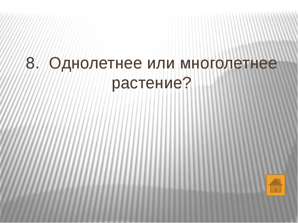 вопросы 1. 2. 3. 4. 5. 6. 7. 8. 9. 10. 11. 12. 13. 14. 15. 16. 17. 18. 19. 20.