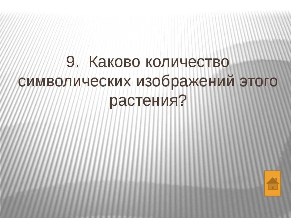 Вопросы Какого цвета медведь? Сколько медведей в России? Какую часть рациона...