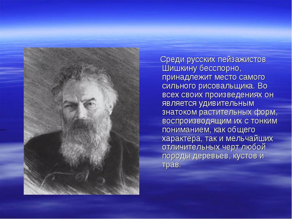 Среди русских пейзажистов Шишкину бесспорно, принадлежит место самого сильно...