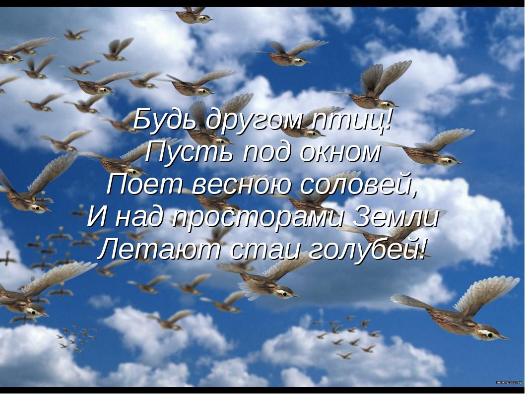 Будь другом птиц! Пусть под окном Поет весною соловей, И над просторами Земли...