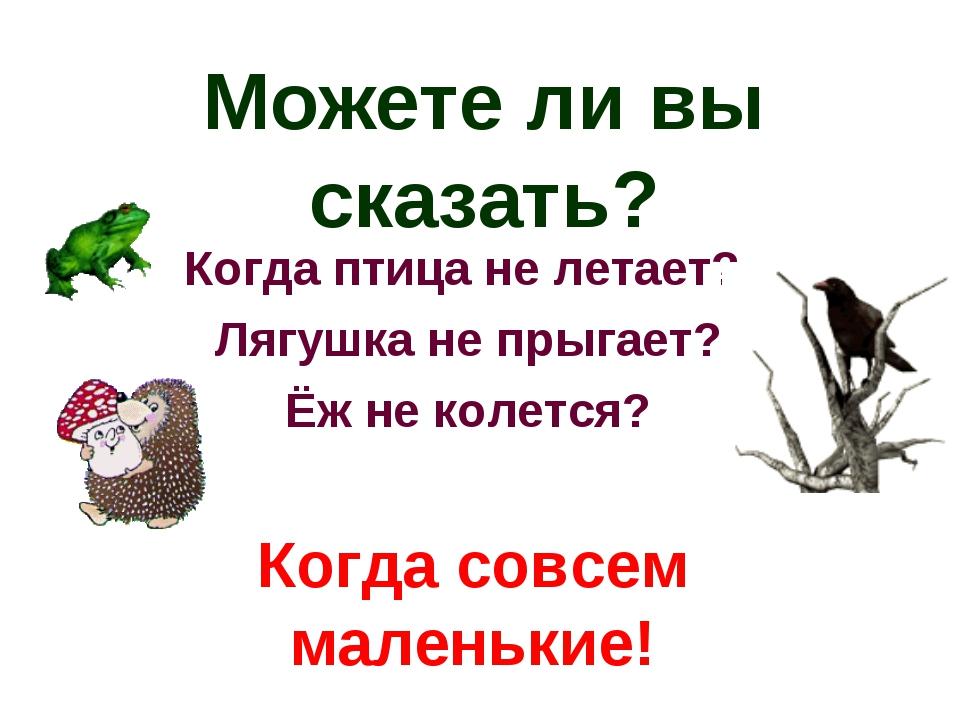 Можете ли вы сказать? Когда птица не летает? Лягушка не прыгает? Ёж не колетс...