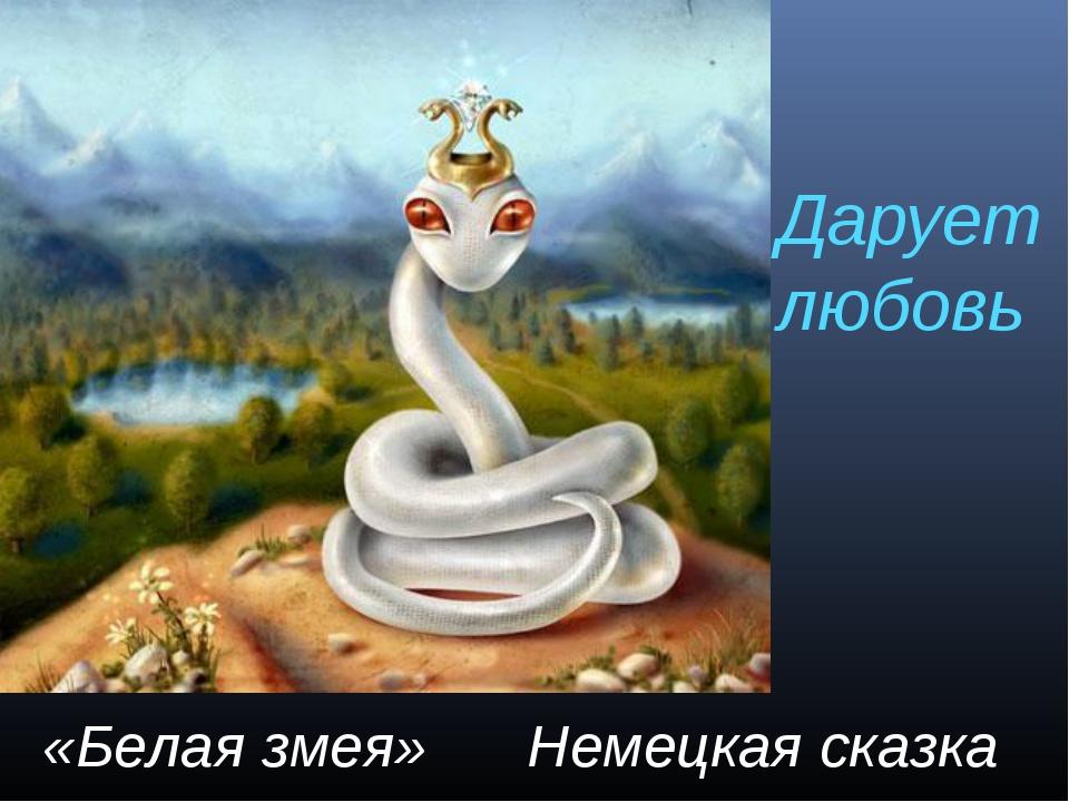 Дарует любовь «Белая змея» Немецкая сказка