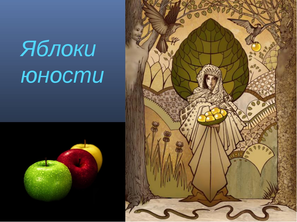 Яблоки юности