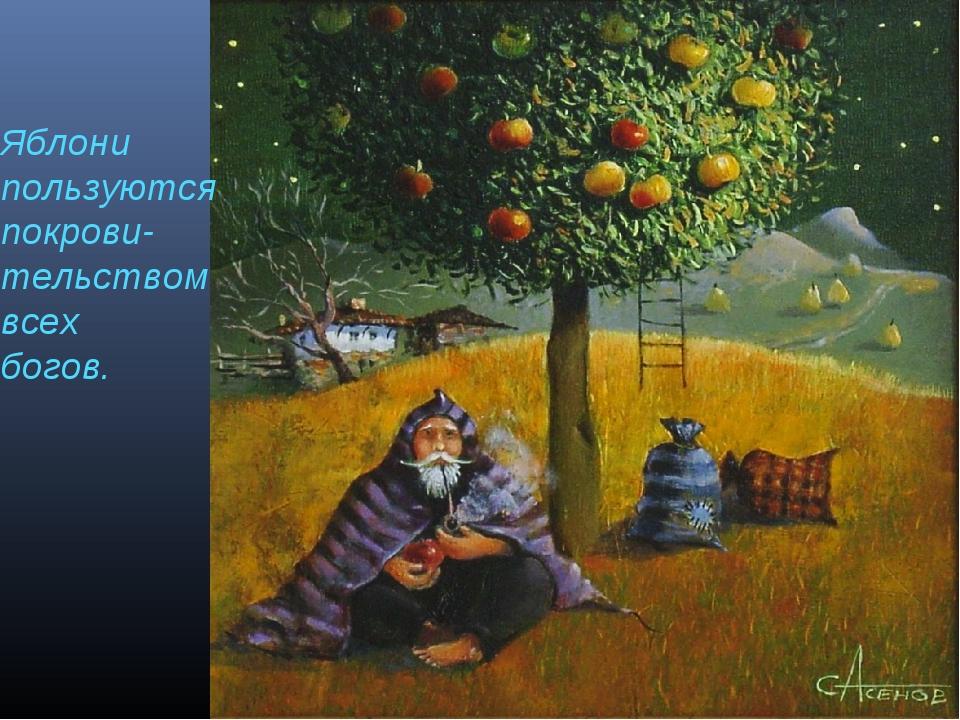 Яблони пользуются покрови- тельством всех богов.