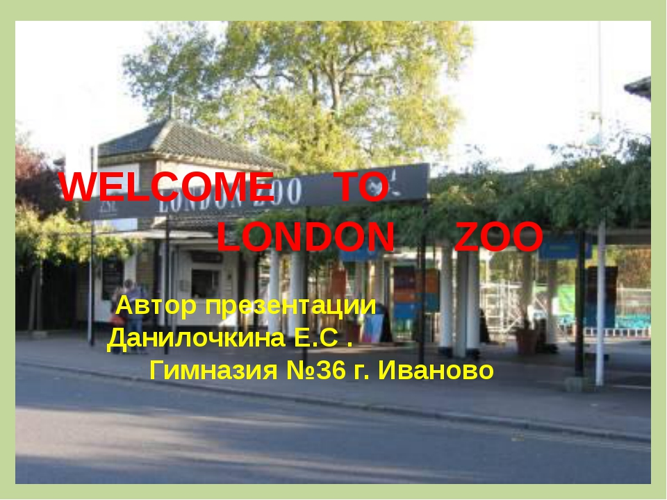 WELCOME     TO                            LONDON     ZOO Автор презентации...
