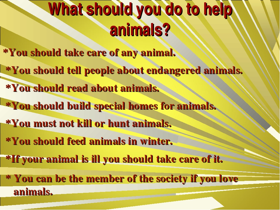 What should you do to help animals? *You should take care of any animal. *You...