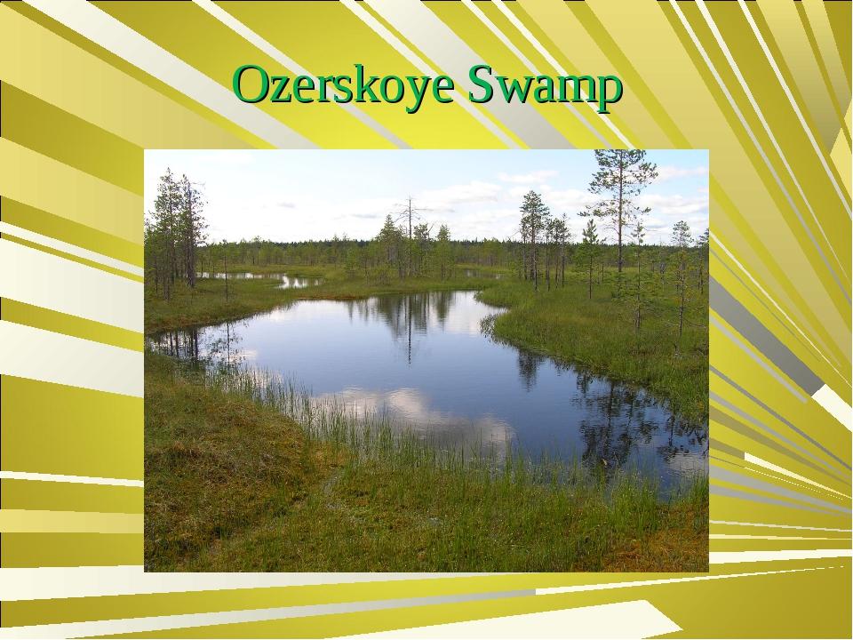 Ozerskoye Swamp