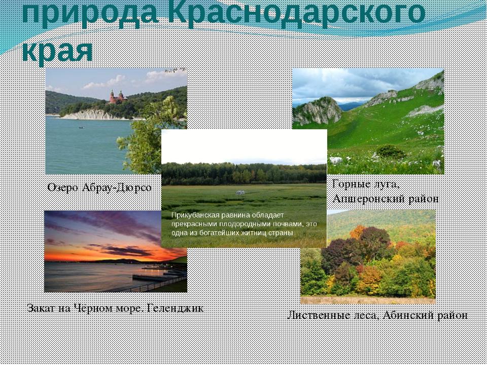 Краснодарский край картинки для презентации, разворот открытки днем