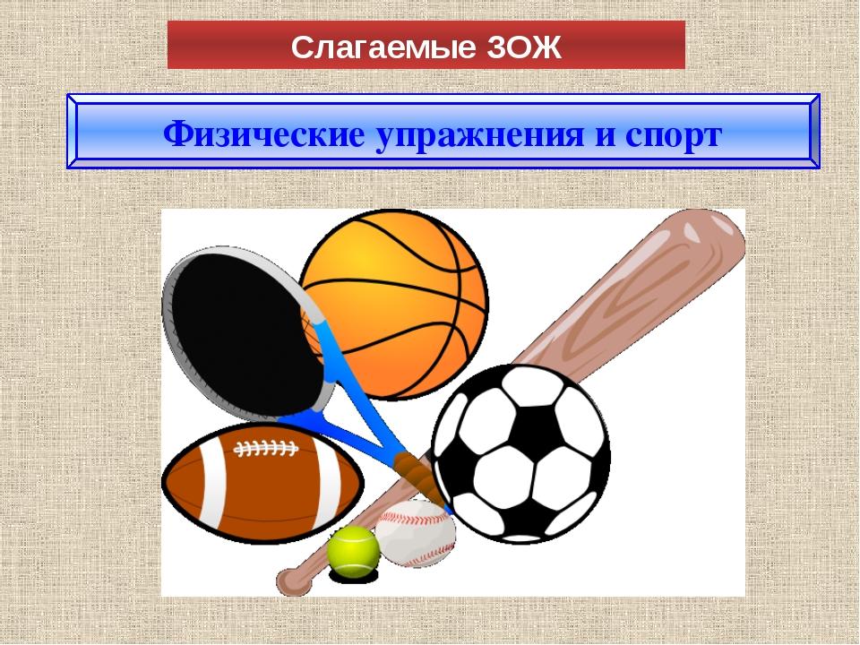 Слагаемые ЗОЖ Физические упражнения и спорт