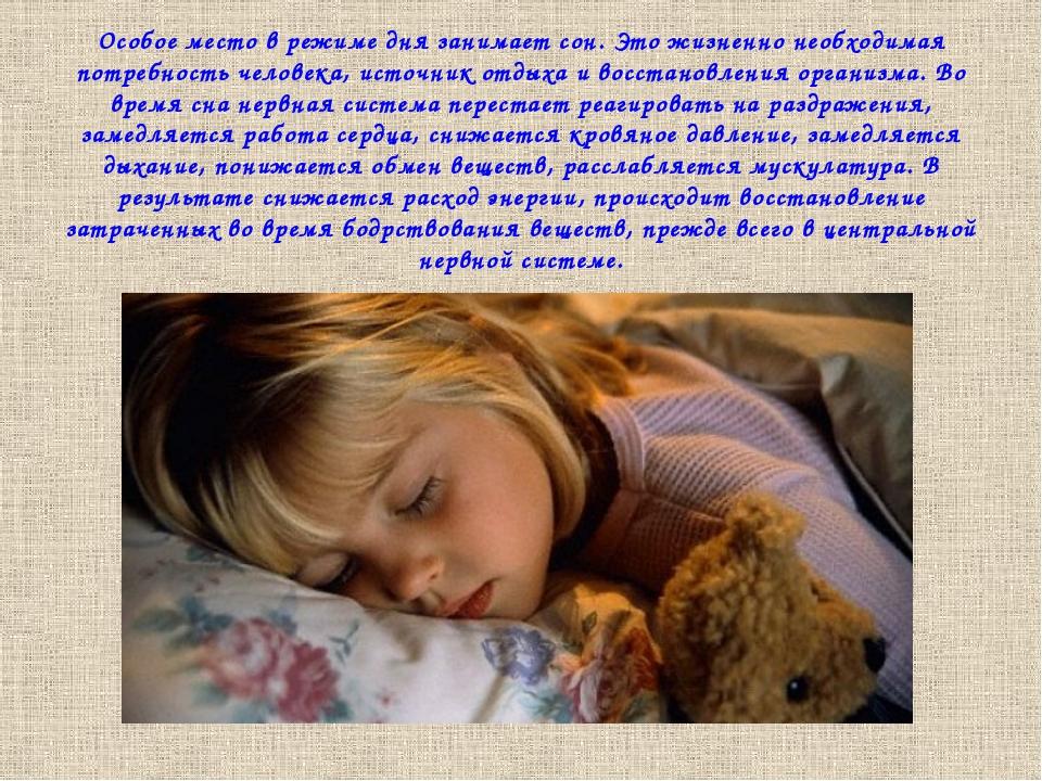 Особое место в режиме дня занимает сон. Это жизненно необходимая потребность...