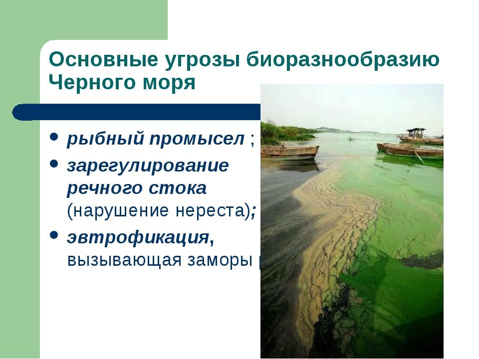 Основные угрозы биоразнообразию Черного моря рыбный промысел ; зарегулировани...