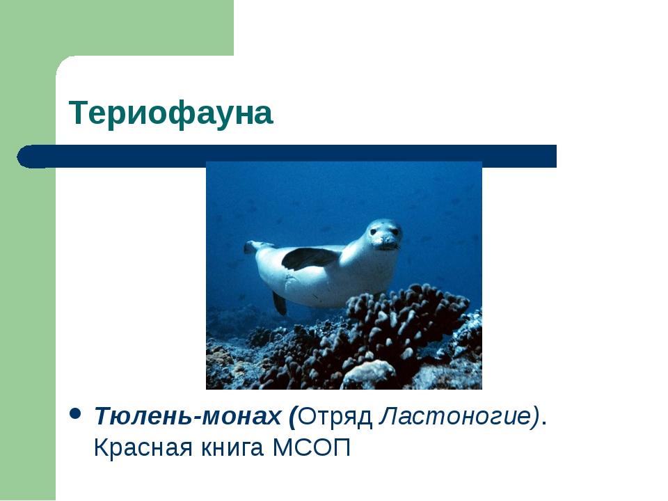 Териофауна Тюлень-монах (Отряд Ластоногие). Красная книга МСОП