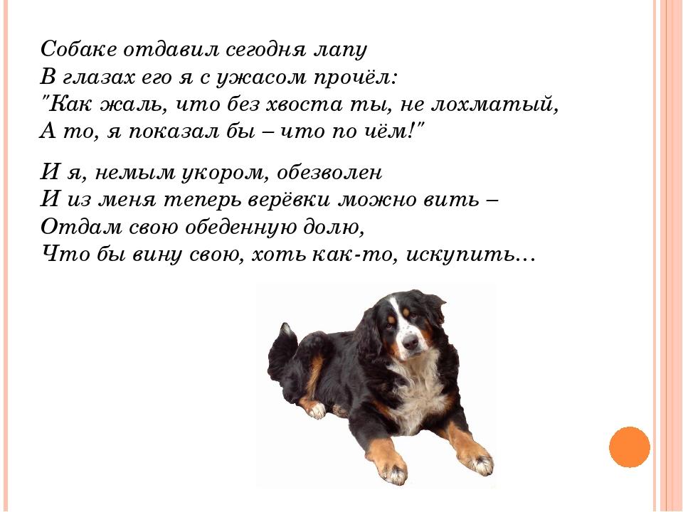 """Собаке отдавил сегодня лапу В глазах его я с ужасом прочёл: """"Как жаль, что..."""