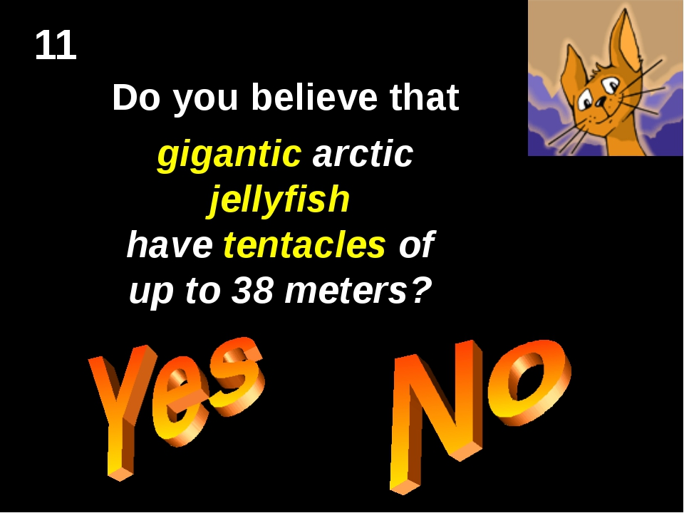 11 Do you believe that gigantic arctic jellyfish have tentacles of up to 38 m...