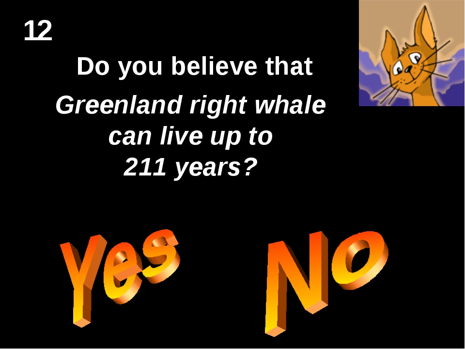 12 Do you believe that Greenland right whale can live up to 211 years?
