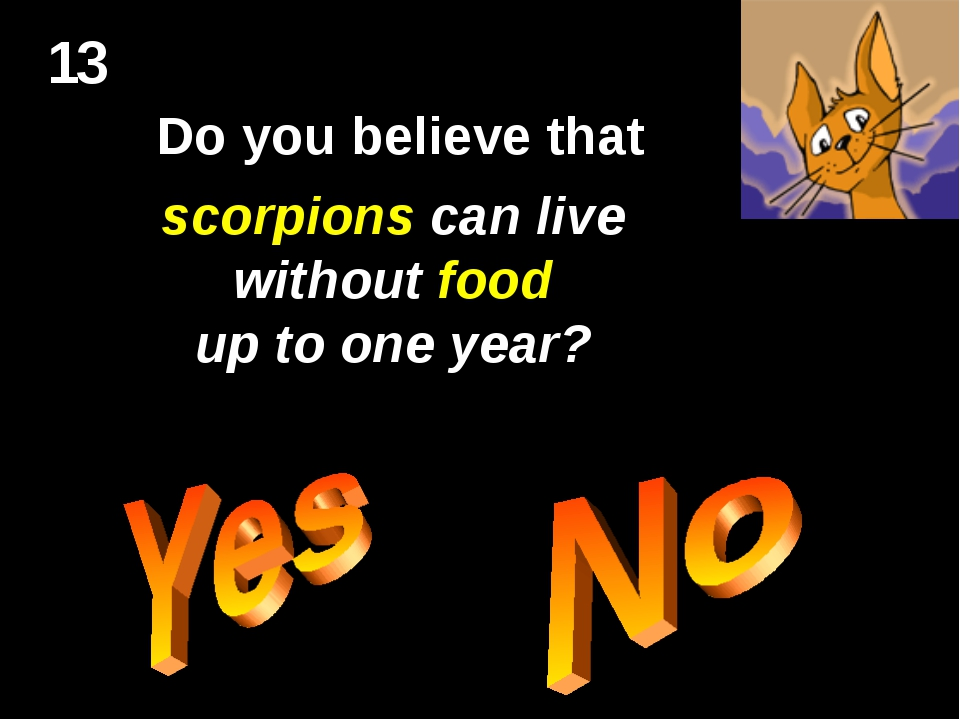 13 Do you believe that scorpions can live without food up to one year?