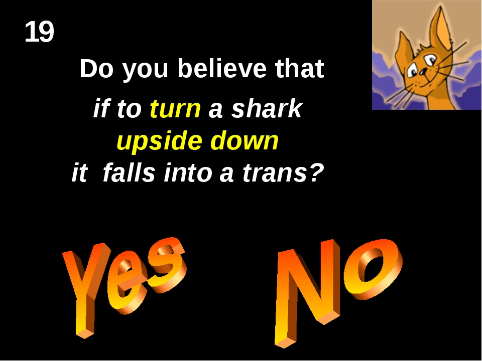19 Do you believe that if to turn a shark upside down it falls into a trans?