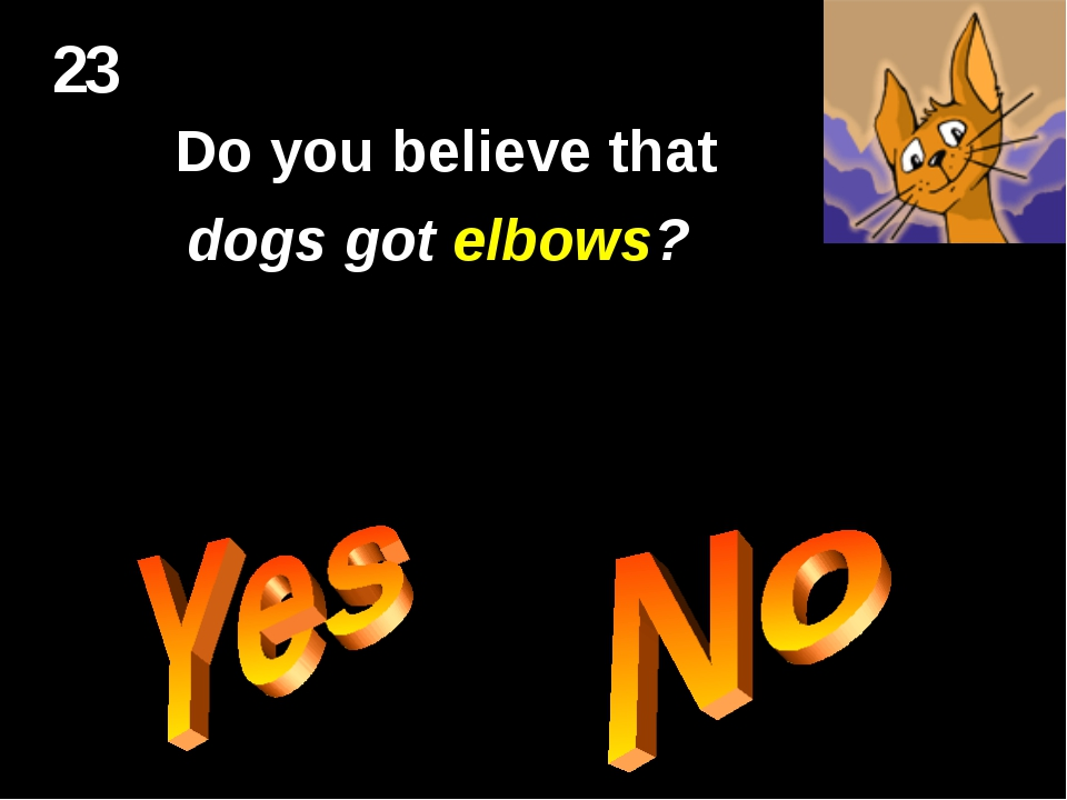 23 Do you believe that dogs got elbows?