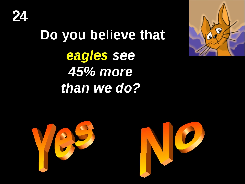 24 Do you believe that eagles see 45% more than we do?