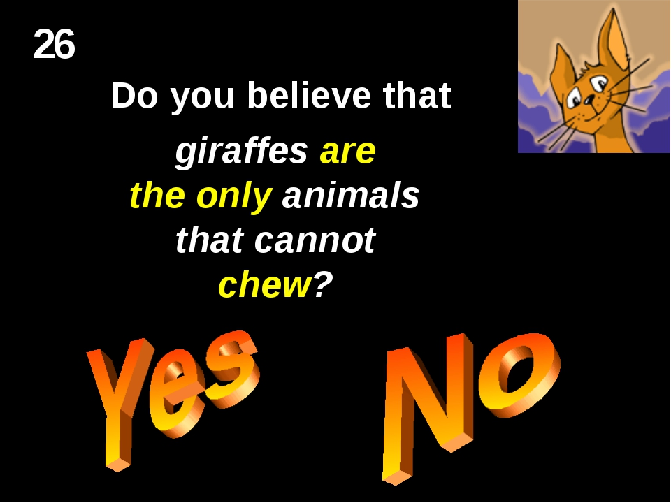 26 Do you believe that giraffes are the only animals that cannot chew?