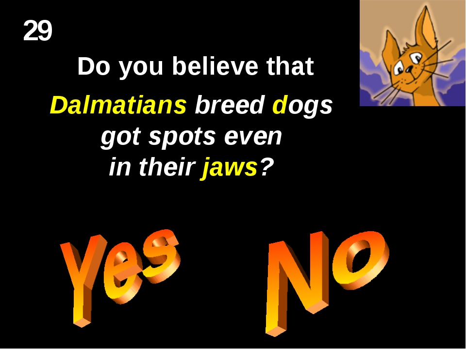 29 Do you believe that Dalmatians breed dogs got spots even in their jaws?