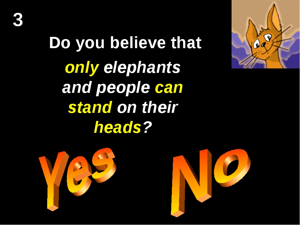 3 Do you believe that only elephants and people can stand on their heads?