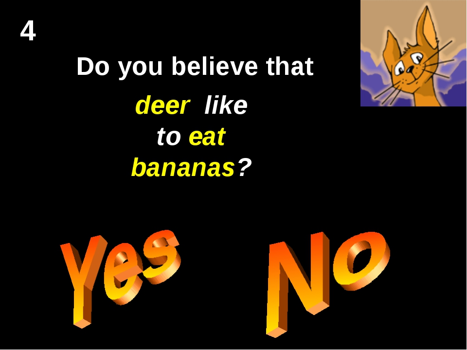 4 Do you believe that deer like to eat bananas?