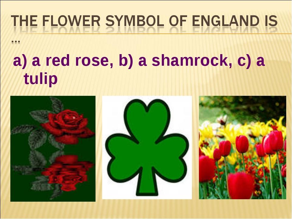 a) a red rose, b) a shamrock, c) a tulip