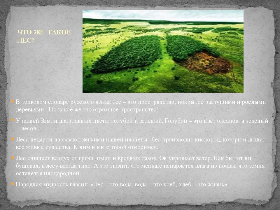 В толковом словаре русского языка лес – это пространство, покрытое растущими...