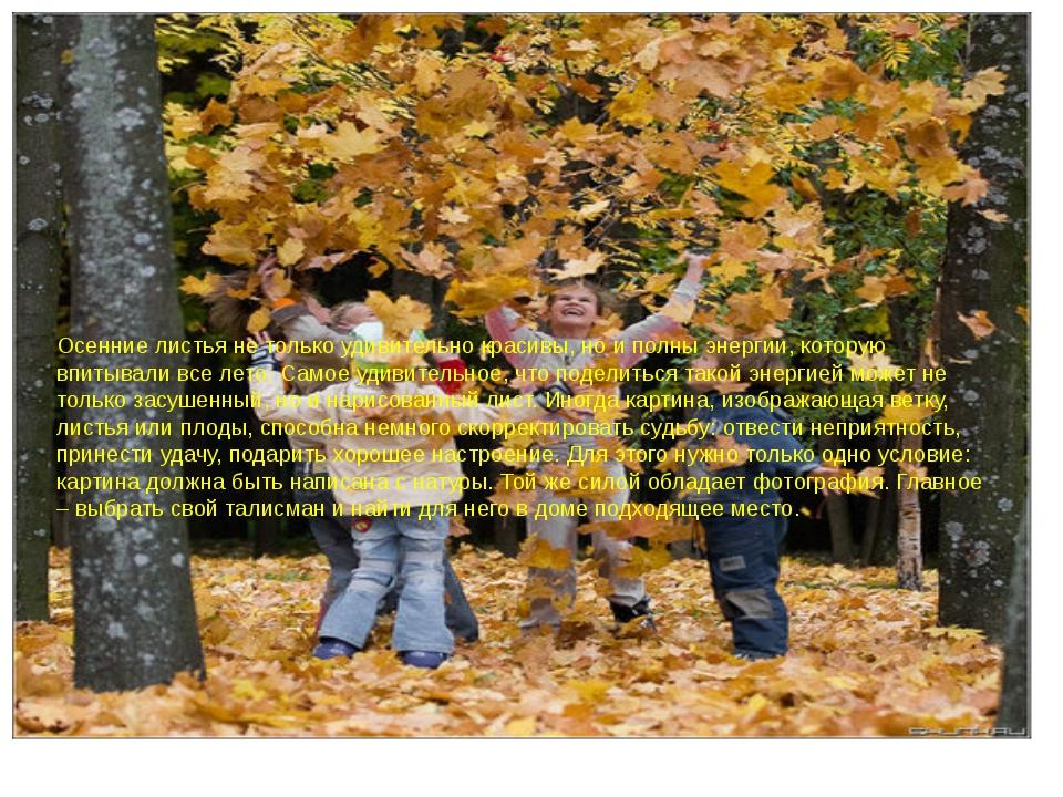 Осенние листья не только удивительно красивы, но и полны энергии, которую вп...