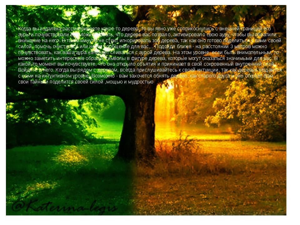 Когда вы издалека рассматриваете какое-то дерево, то вы явно уже соприкоснул...