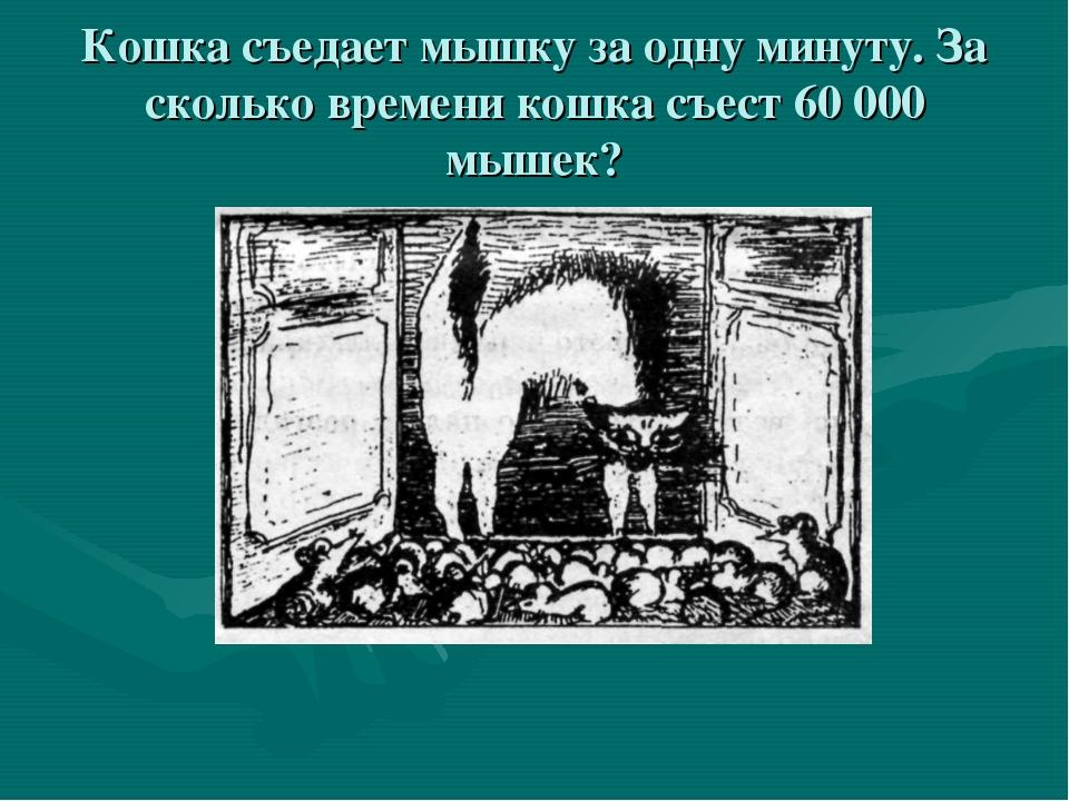 Кошка съедает мышку за одну минуту. За сколько времени кошка съест 60 000 мыш...