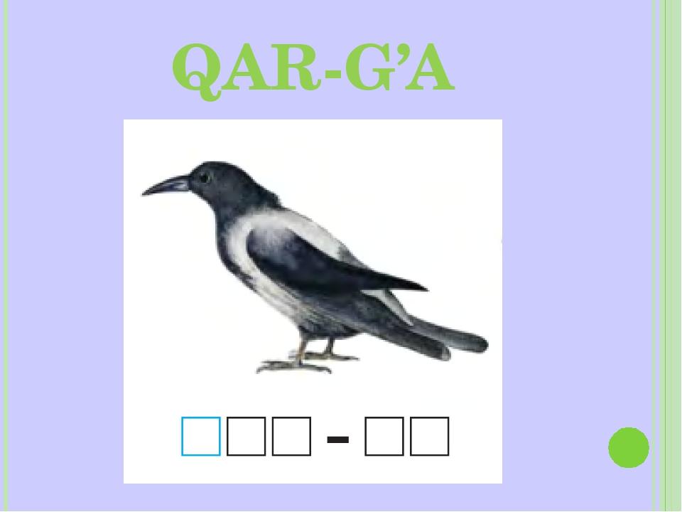 QAR-G'A