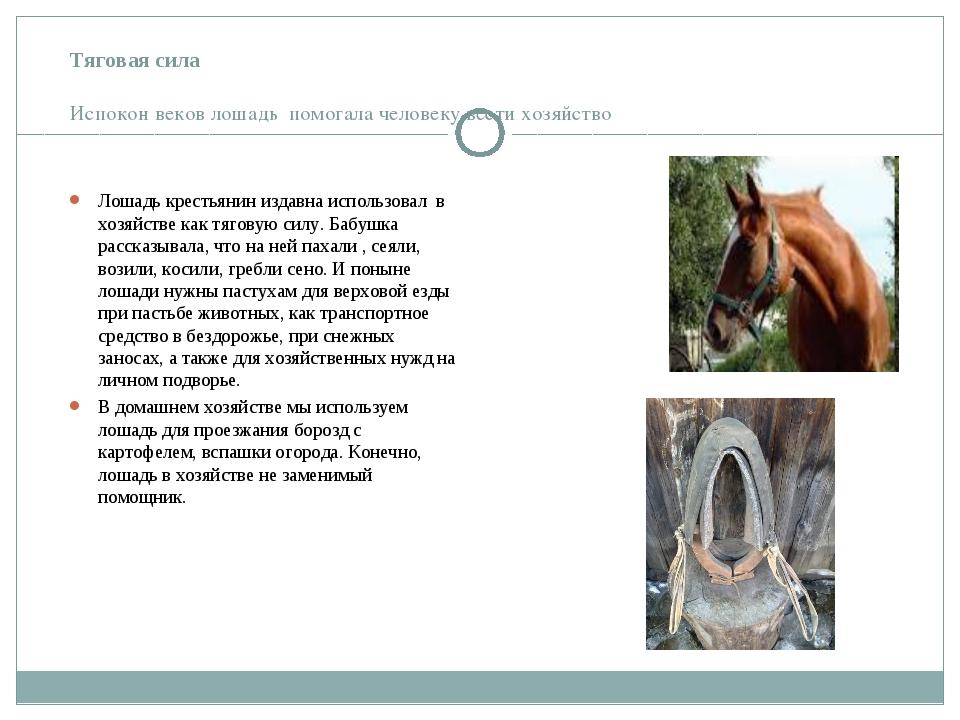 Тяговая сила Испокон веков лошадь помогала человеку вести хозяйство Лошадь кр...