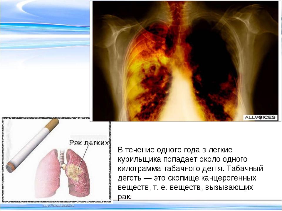 В течение одного года в легкие курильщика попадает около одного килограмма та...