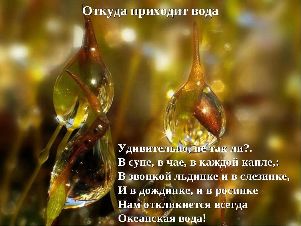 Откуда приходит вода Удивительно, не так ли?. В супе, в чае, в каждой капле,:...