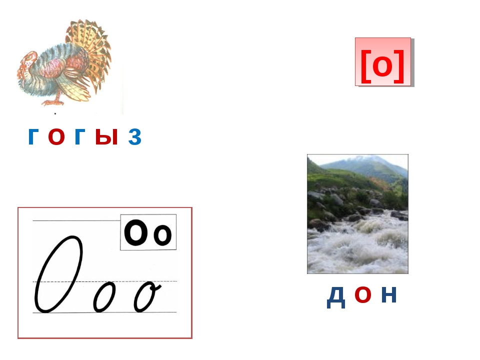 [о] г о г ы з д о н