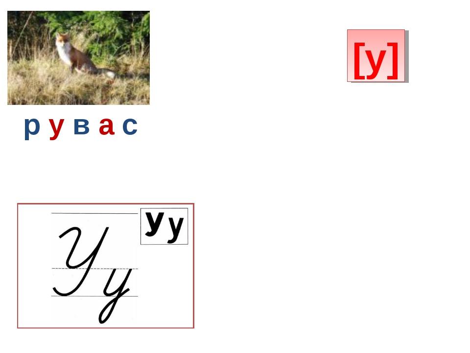 [у] р у в а с