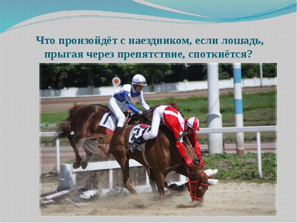 Что произойдёт с наездником, если лошадь, прыгая через препятствие, споткнёт...