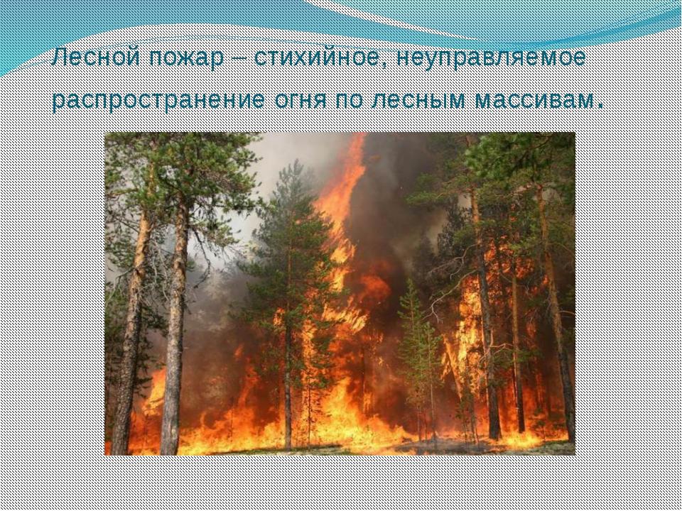 Лесной пожар – стихийное, неуправляемое распространение огня по лесным массив...