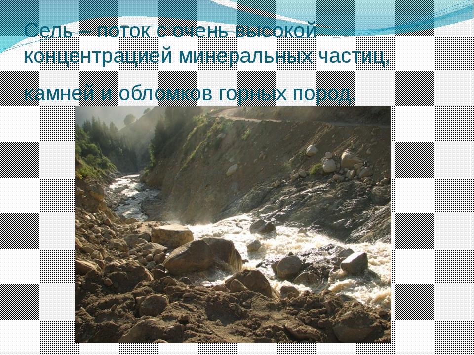 Сель – поток с очень высокой концентрацией минеральных частиц, камней и облом...