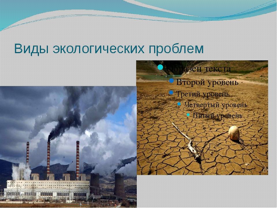 Виды экологических проблем