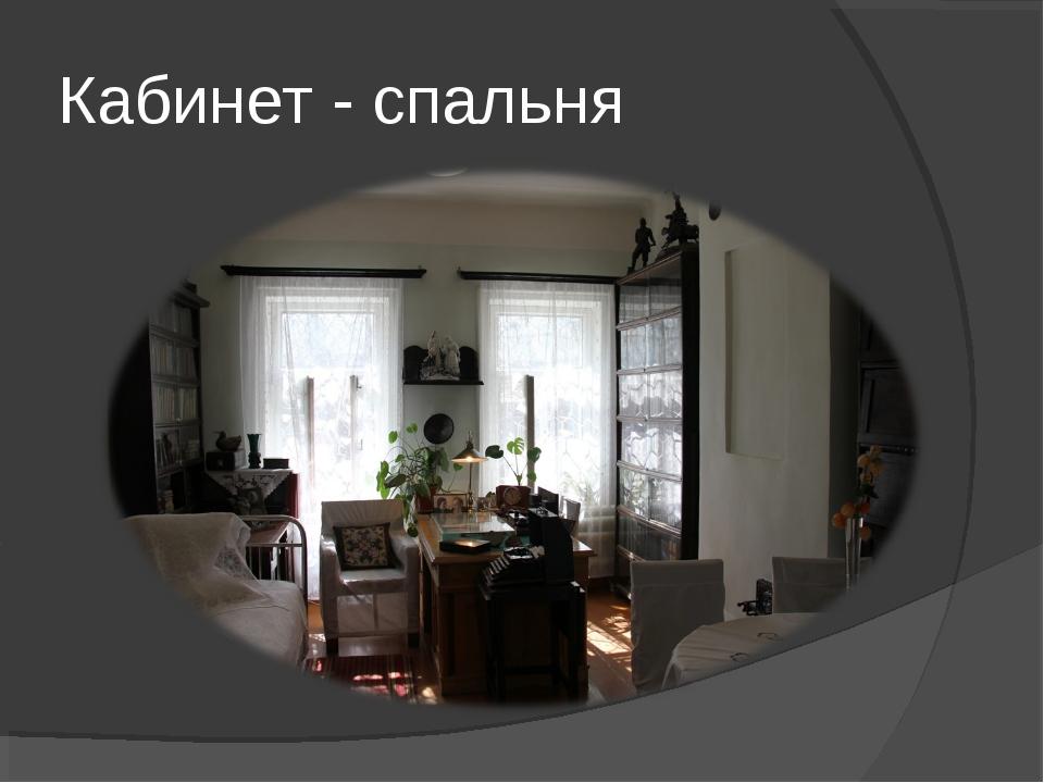 Кабинет - спальня