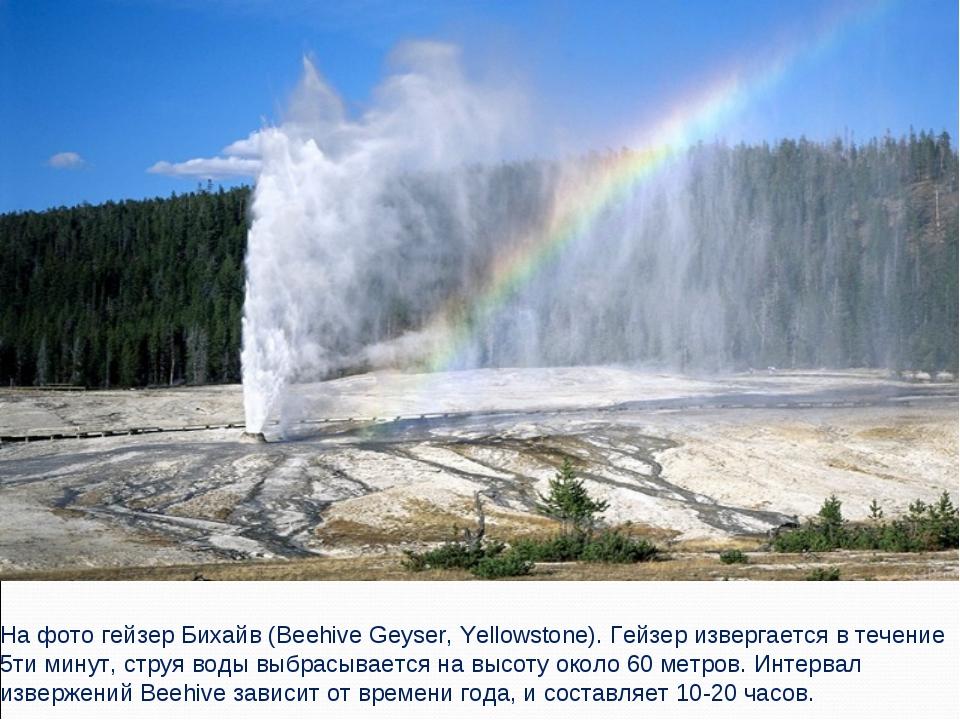 На фото гейзер Бихайв (Beehive Geyser, Yellowstone). Гейзер извергается в теч...